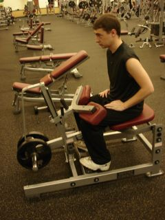 Seated calf raises -- starting position